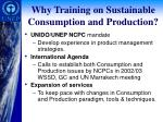 why training on sustainable consumption and production