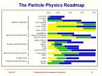 the particle physics roadmap
