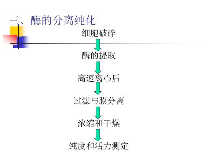 三、酶的分离纯化