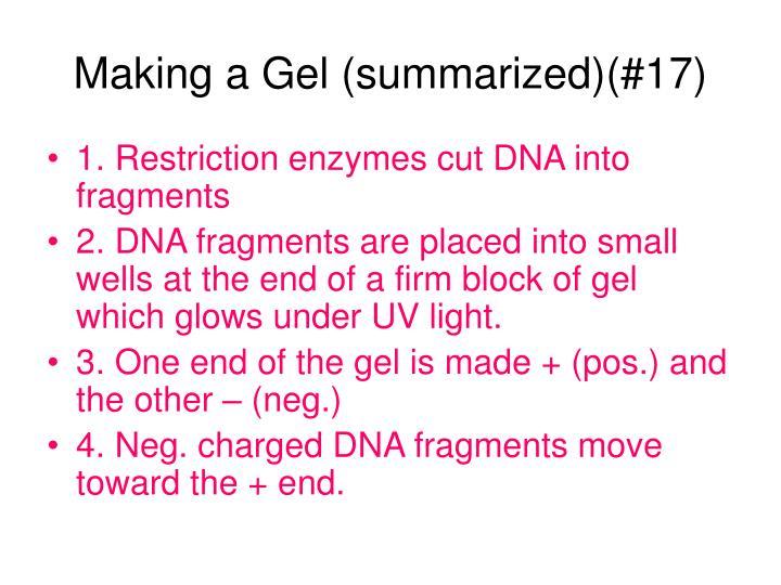 Making a Gel (summarized)(#17)