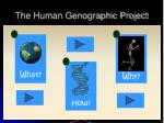 the human genographic project