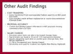 other audit findings