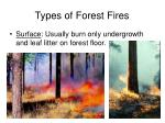 types of forest fires