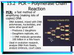 15 2 pcr polymerase chain reaction