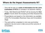 where do the impact assessments fit