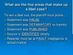 what are the five areas that make up a libel case