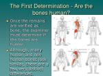 the first determination are the bones human