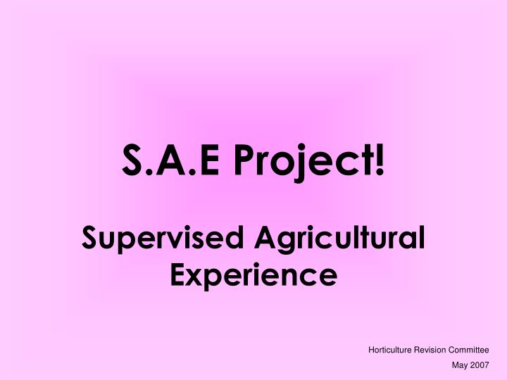 s a e project n.