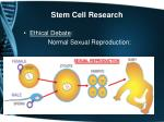 stem cell research1