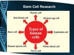 stem cell research2