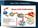 stem cell research4