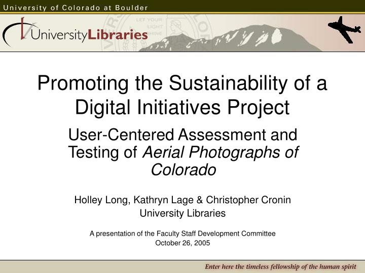 promoting the sustainability of a digital initiatives project n.