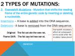 2 types of mutations1