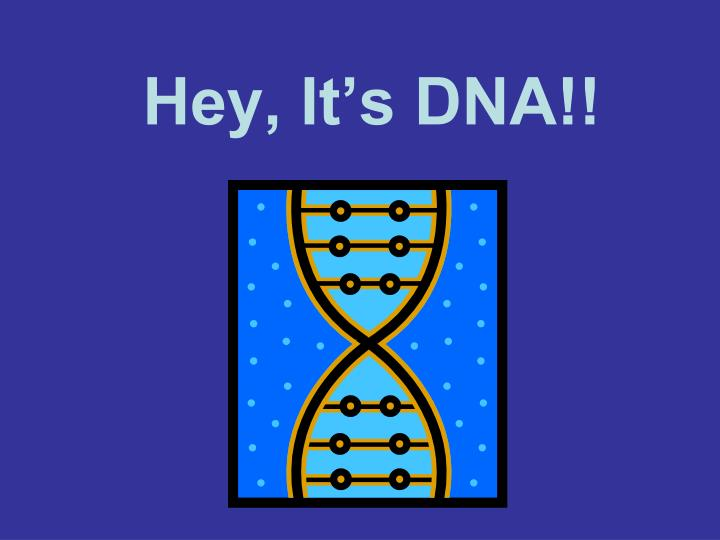 hey it s dna n.