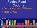 recipe read in codons
