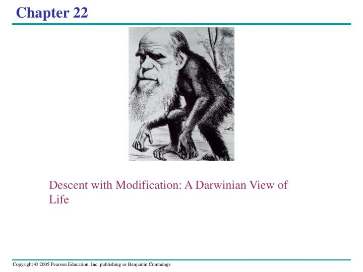 descent with modification a darwinian view of life n.