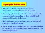glycolysis an overview