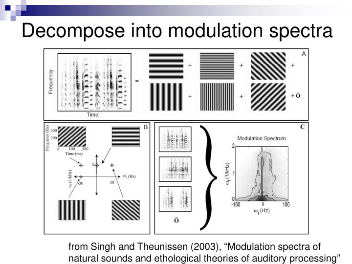 Decompose into modulation spectra