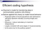 efficient coding hypothesis
