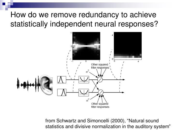 How do we remove redundancy to achieve statistically independent neural responses?