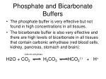 phosphate and bicarbonate buffers