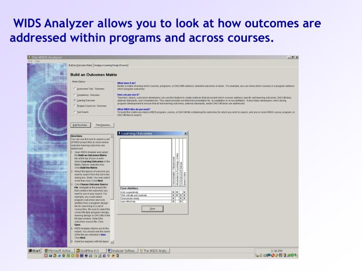 WIDS Analyzer allows you to look at how outcomes are addressed within programs and across courses.