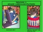 preschool 3 sensory curriculum strategies
