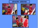 sensory seeking