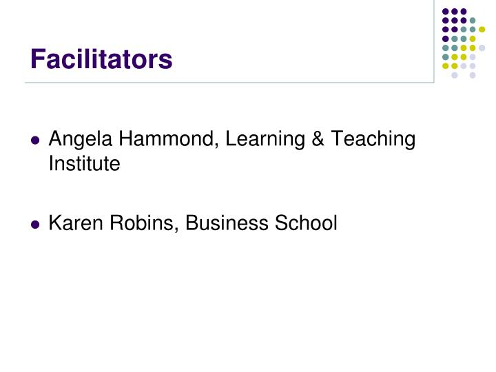 facilitators n.