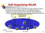 self organizing wlan