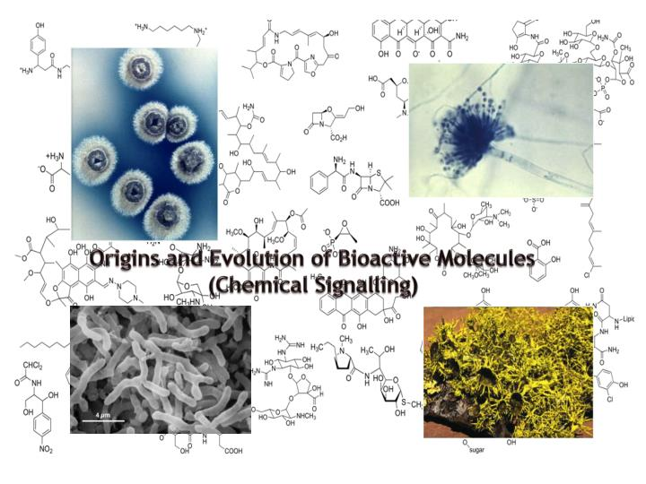 origins and evolution of bioactive molecules chemical signalling n.