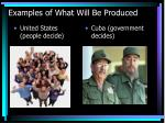 examples of what will be produced