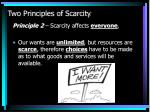 two principles of scarcity1