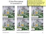 color perception