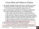 future work and follow on projects