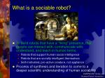 what is a sociable robot