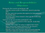 roles and responsibilities objectives