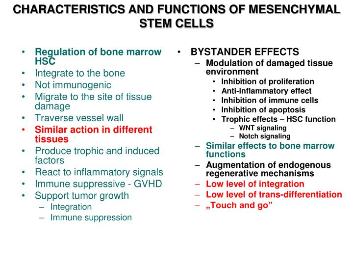 CHARACTERISTICS AND FUNCTIONS OF MESENCHYMAL STEM CELLS