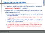 web site vulnerabilities