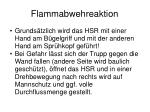flammabwehreaktion