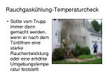 rauchgask hlung temperaturcheck1