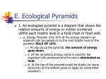 e ecological pyramids