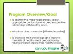 program overview goal