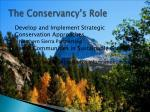 the conservancy s role