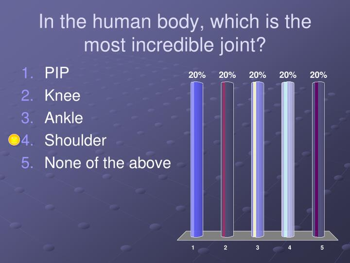 In the human body, which is the most incredible joint?