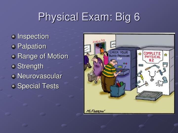 Physical Exam: Big 6