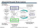 integrated dynamic brain analysis