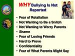 why bullying is not reported