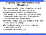integrating cash and foreign exchange management