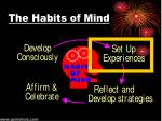 the habits of mind1